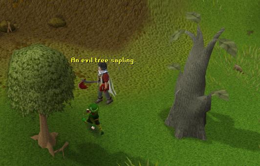 An Evil Tree Sapling